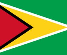 Flag_Guyana