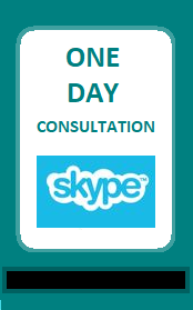 one day consultancy